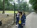 zoo-tg-mures2013_5
